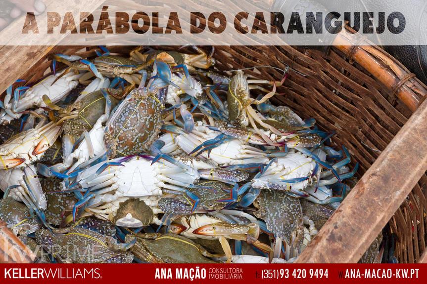 Parábola do Caranguejo aplicada aos consultores imobiliáios