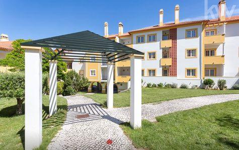 Garden of the condominium