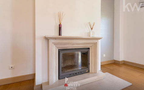 Fireplace with stove
