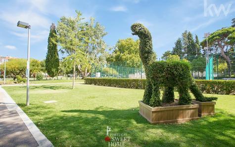 Parc Quinta da Alagoa