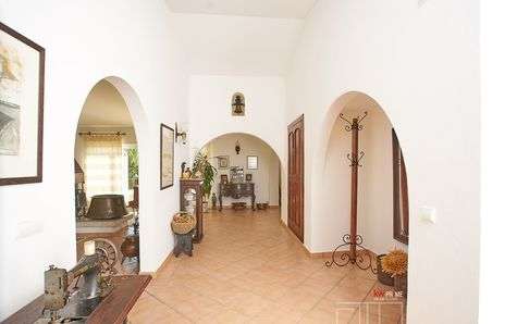 Entrance hall of the house